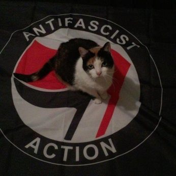 comrade kitty