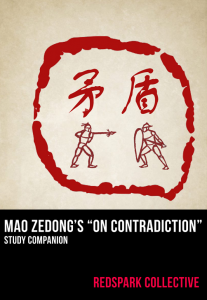 contradictions-207x300